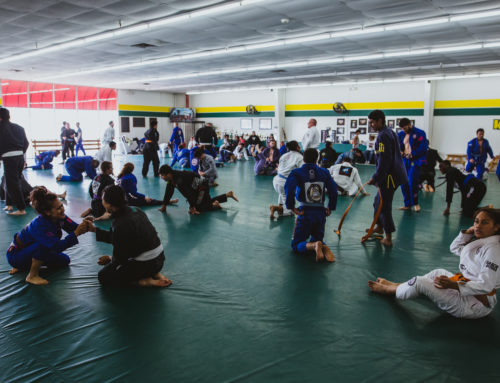 The new year and the incoming white belts